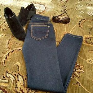 NWOT Indigo Rein Skinny Jeans